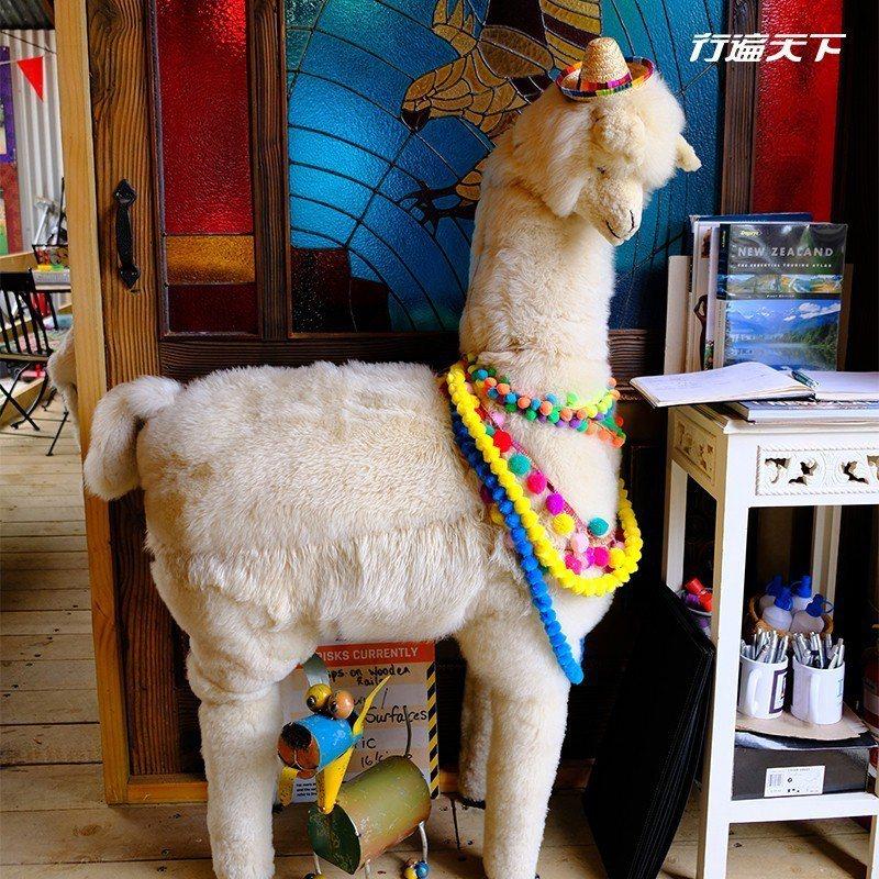 等身大羊駝模型,也超級傻呆萌。  攝影 行遍天下