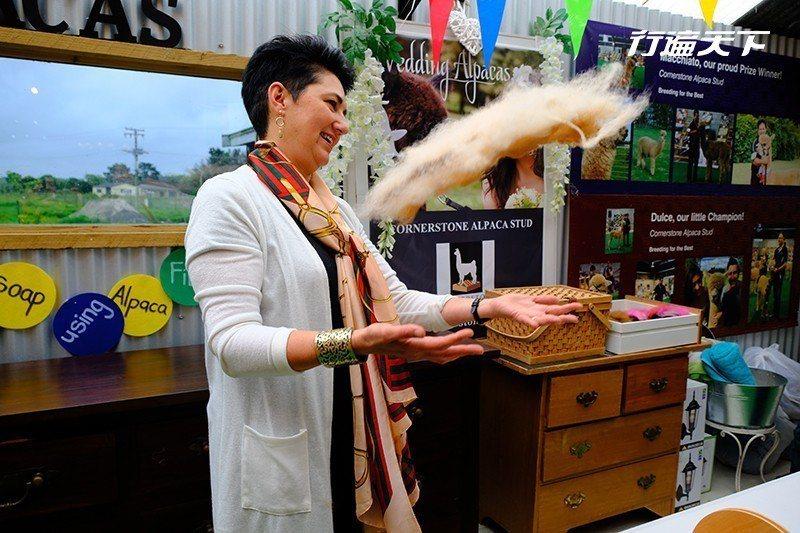牧場女主人示範羊駝毛的分解過程,同時也讓我們了解其輕盈與可用之處。  攝影 行遍...