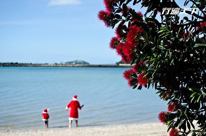 在南半球的紐西蘭,正迎來一年最美好的夏日季節,陽光沙灘比基尼的聖誕氣氛正點燃,過...