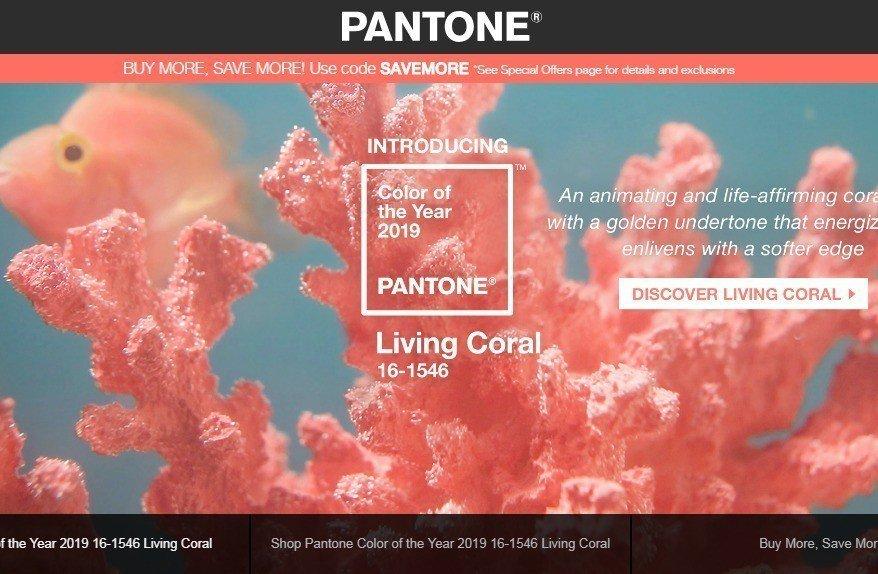 色彩權威公司「彩通」選出2019代表色:活珊瑚色。擷自彩通網站