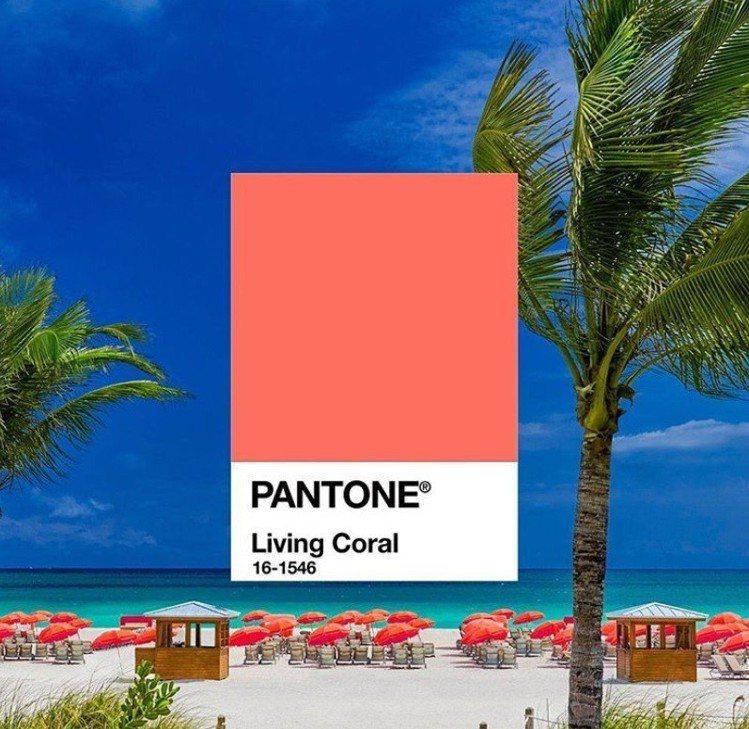 色彩權威機構Pantone公布2019年度代表色,由編號16-1546的「活珊瑚...