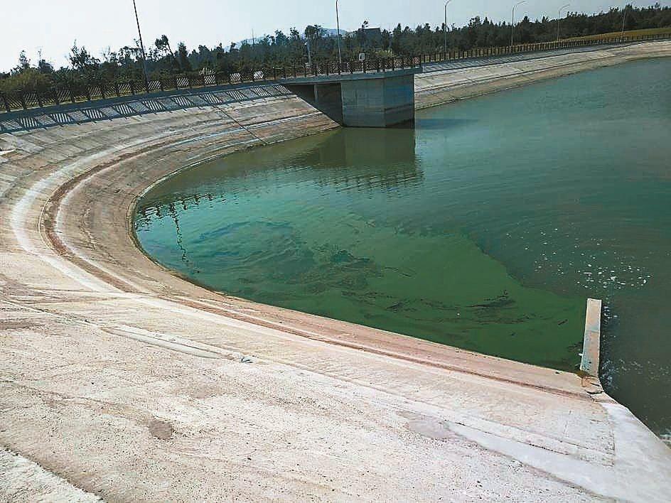 金門田浦受水池近日被民眾發現水面「綠綠的」,漂浮著一層青苔。 圖/摘自網路