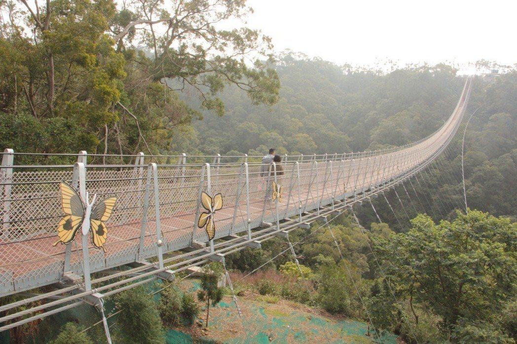南投縣南投市猴探井天空之橋全長204公尺,曾創下3個月內百萬人次登橋紀錄。 聯合...