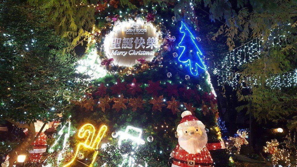 大板根森林溫泉酒店今年特別用酒店區前的「落羽松」樹群,創作創意耶誕區,這是在別的...