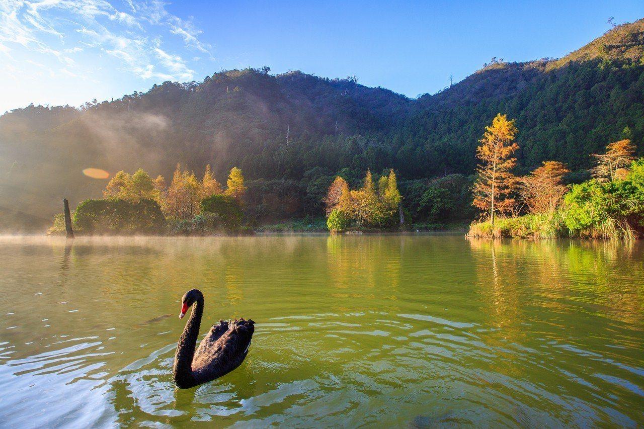 明池山莊明池湖自然生態美景。圖/力麗觀光提供