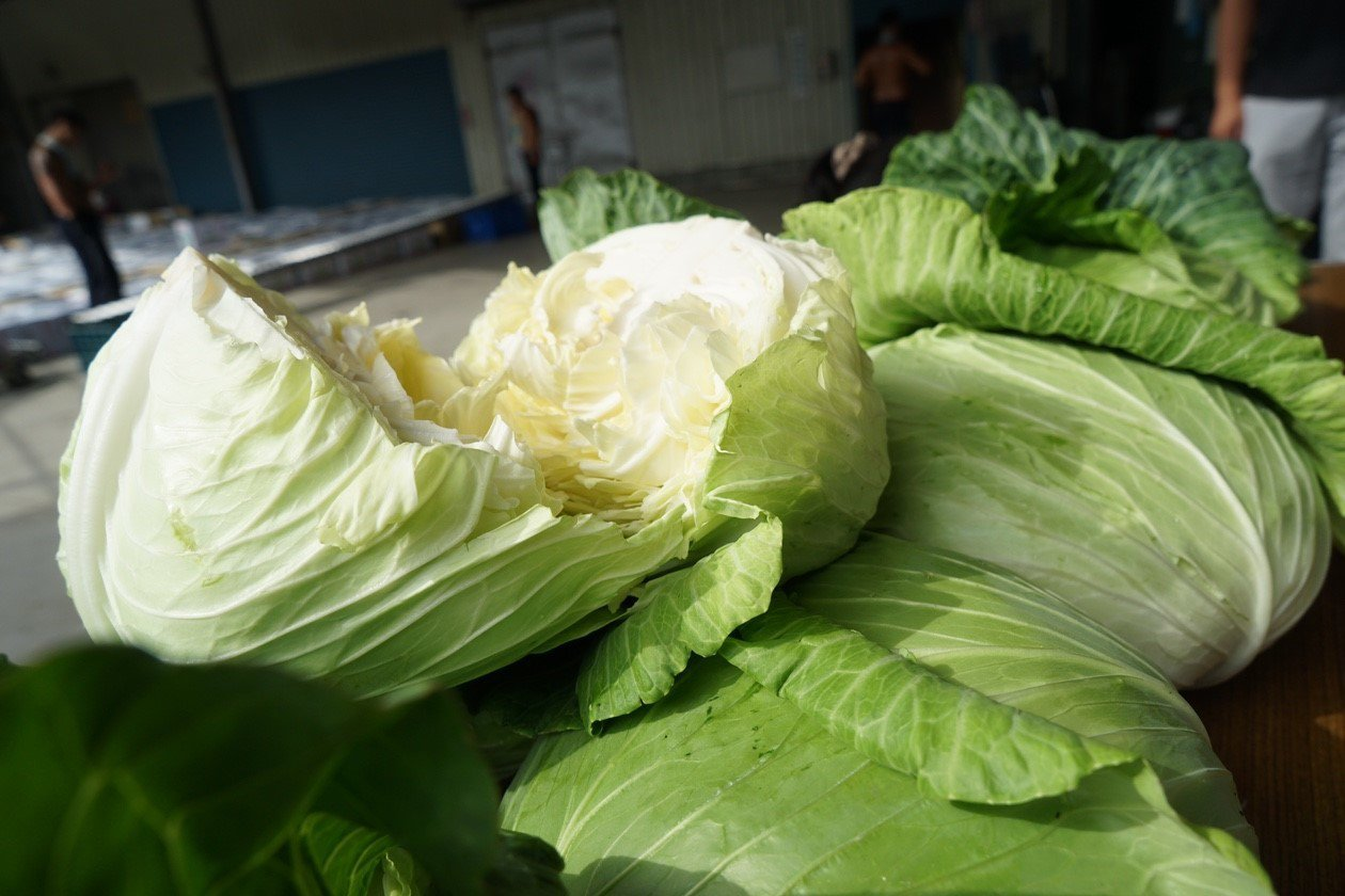 近日高麗菜等蔬菜生產過剩、價格崩跌,為減輕中南部菜農負擔,桃園遠東百貨向農友採購...