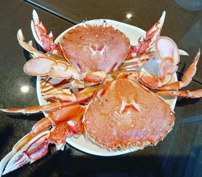 在漁港吃飯加菜現撈螃蟹。圖/鄭雅嬬提供