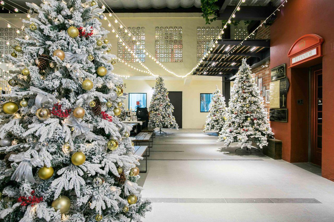 位於南投草屯的蔡氏釀酒精釀酒廠,今年特別請專業美術團隊打造全新銀白聖誕主題與多種...