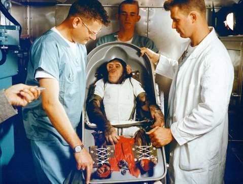 英雄或替代品?太空猩猩漢姆「被傳奇」的一生