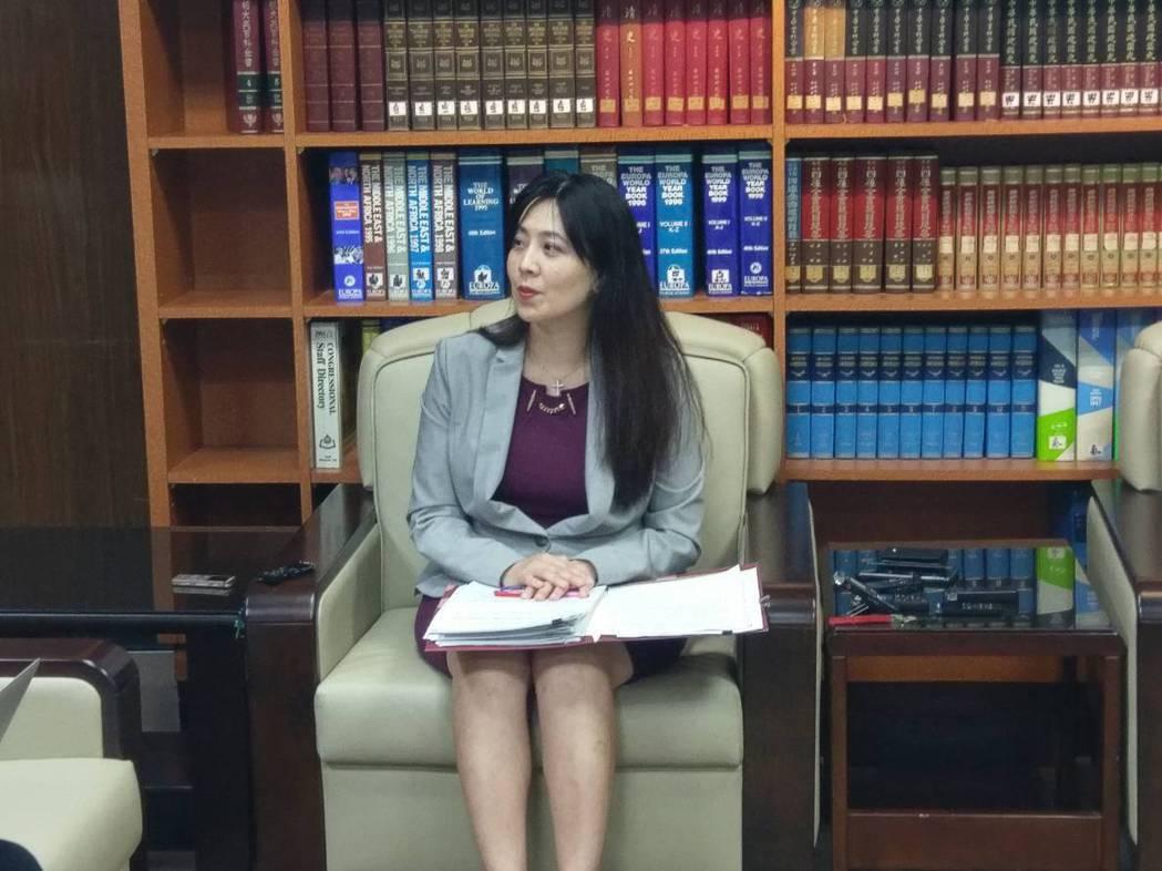 外交部公眾外交協調會副執行長歐江安。記者徐偉真/攝影