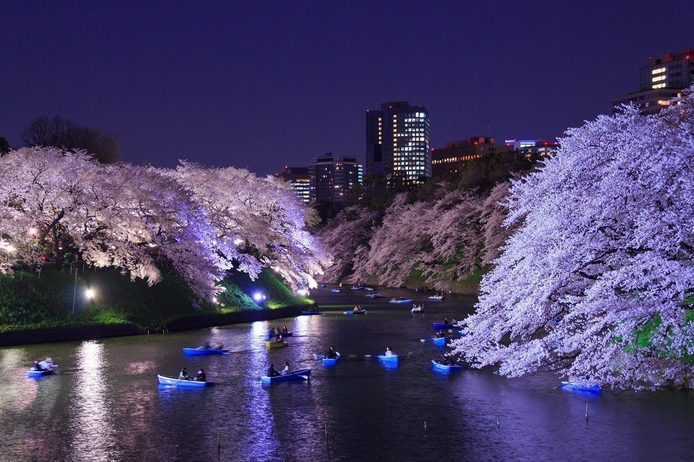 台灣人真的超級喜愛日本。全球旅遊搜尋引擎Skyscanner調查顯示,去年15大...