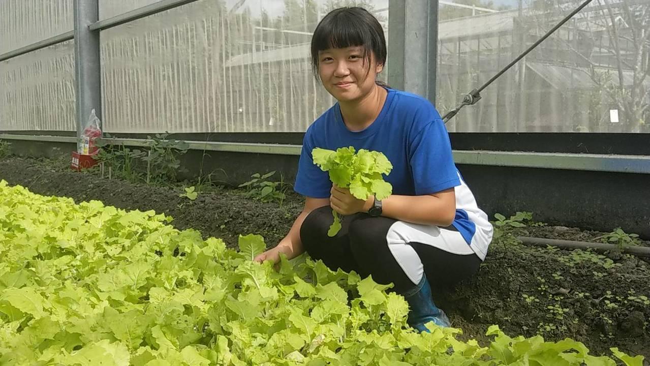 花蓮高農張惠寗喜歡和植物、農作物相處,覺得紓壓。記者王燕華/攝影