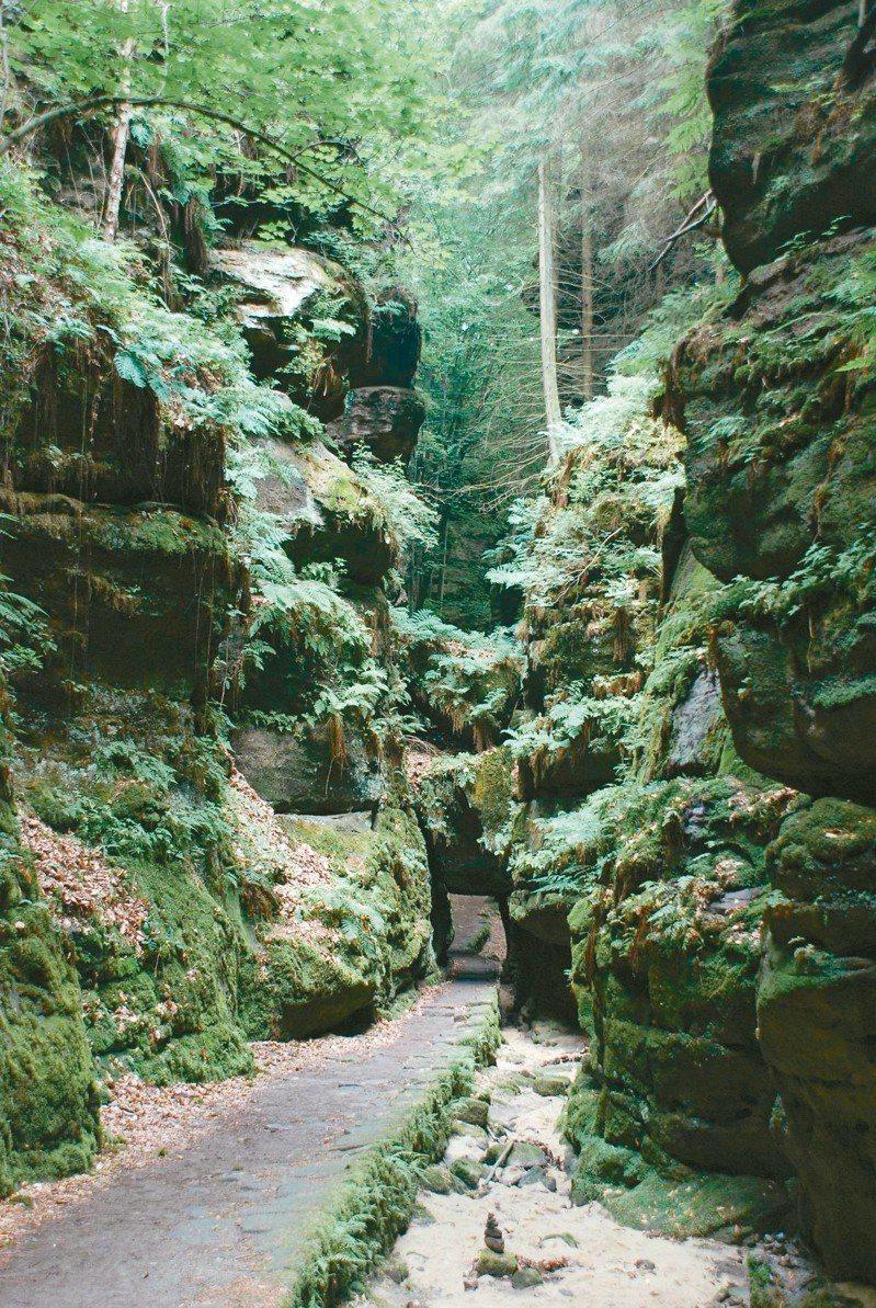 德國境內,薩克森瑞士國家公園裡Uttewalder Grund地帶的著名石門。
