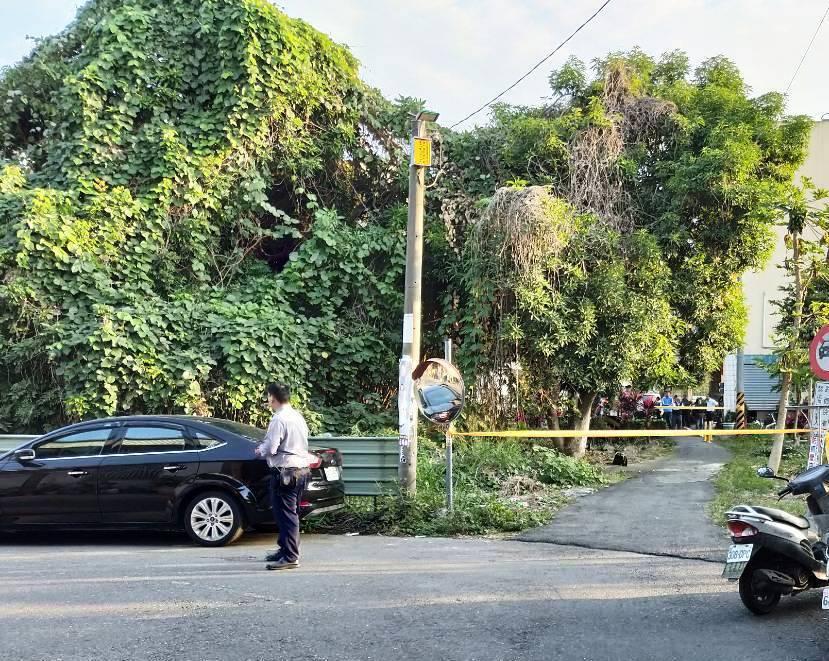 田中鎮張姓男子爬上樹修剪枝幹,不慎跌落傷重死亡。記者何烱榮/翻攝