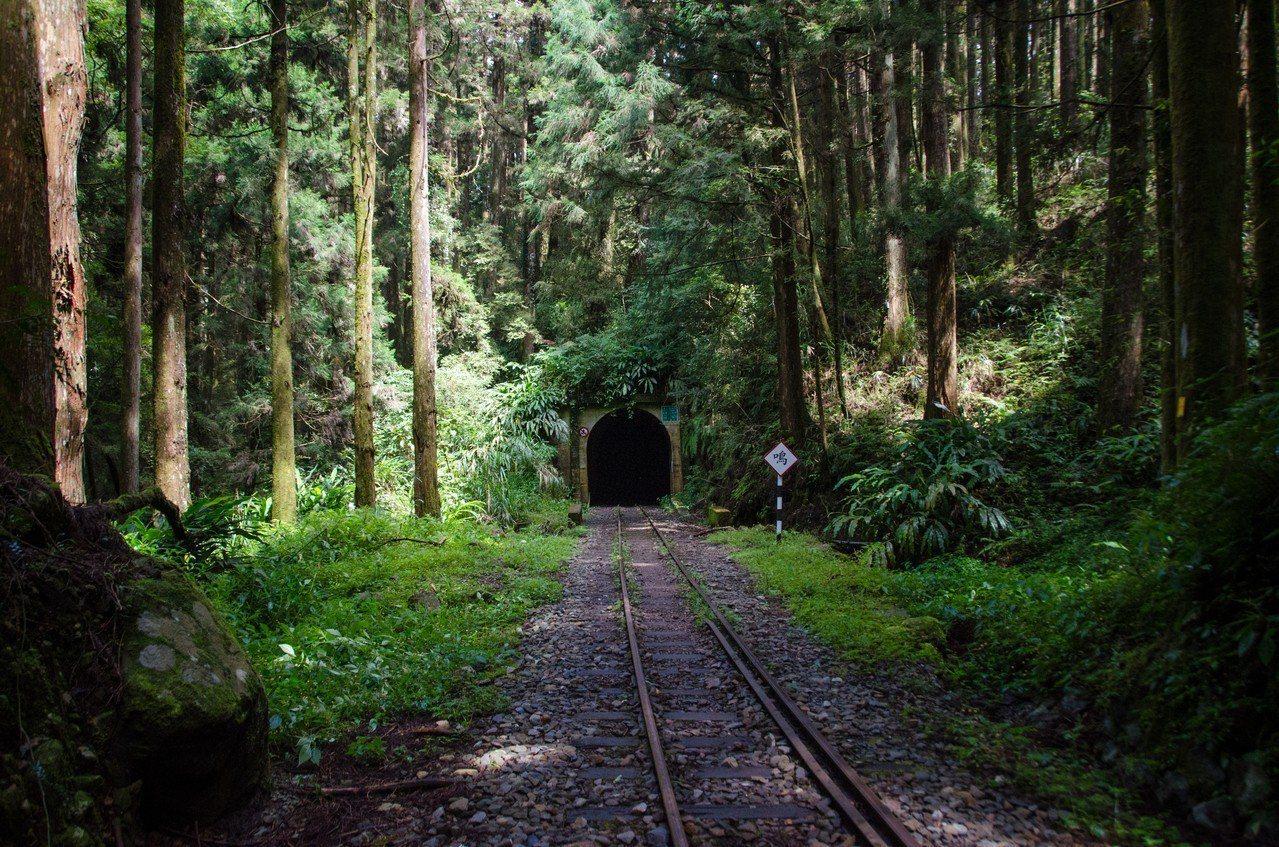 造訪鐵道迷所稱「神隱少女山洞」。圖/賴國華提供