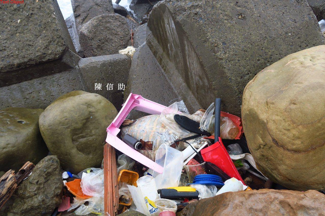 「動手愛台灣」志工陳信助,今天在基隆與瑞芳交界處海域發現一隻綠蠵亞成龜屍體。圖/...