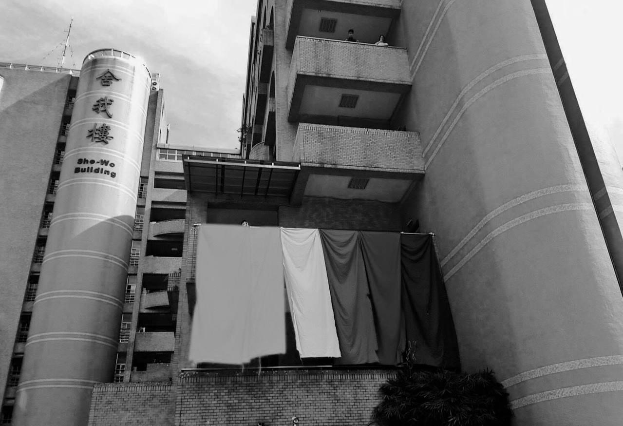 世新彩虹行動小組發布聲明表示,校方還是以「沒有相關規定」、「掛在舍我樓外牆會影響...