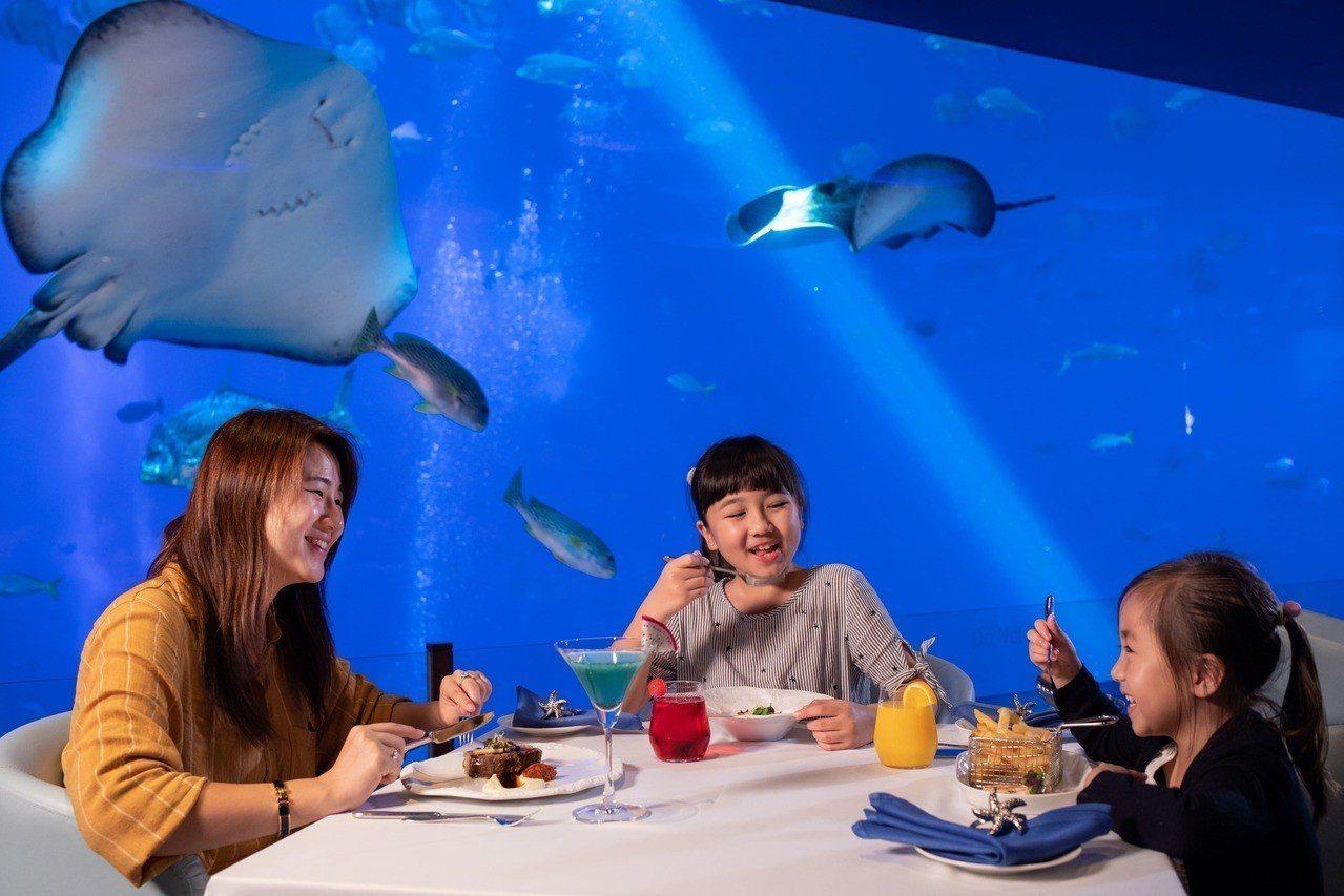 S.E.A.海洋館內,能夠享受一邊吃飯、一邊用餐的特殊體驗。圖/聖淘沙名勝世界提...