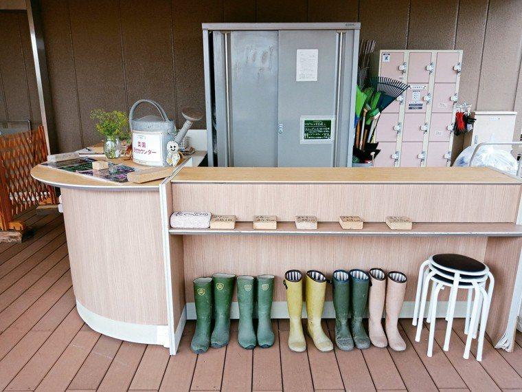 居民共同經營的屋頂菜園,通常有自主管理空間,提供雨鞋、手套、耕種工具等。 圖/朱...
