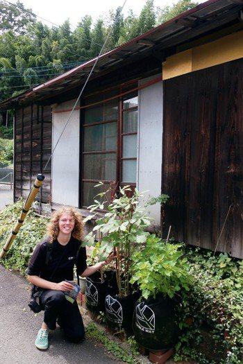 日本千葉大學學生發起路邊種菜行動,把社區道路變「可食街道」。 圖╱梧桐基金會提供