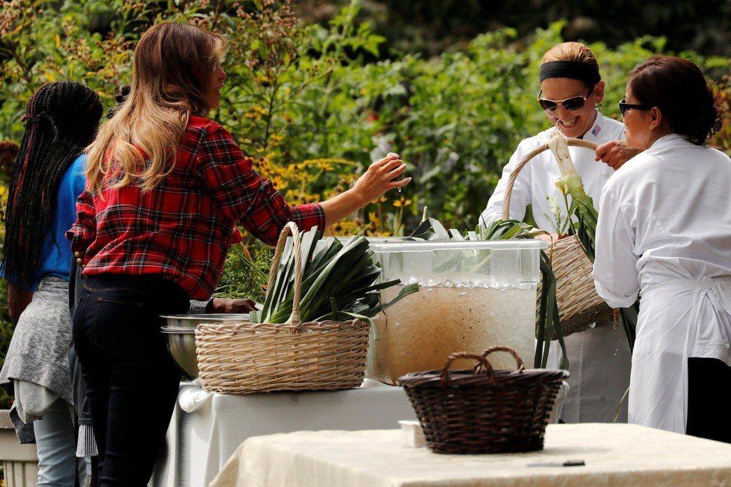 梅蘭妮亞(左)有在維護白宮廚房菜園,但那不是她的生活重心。 (路透)