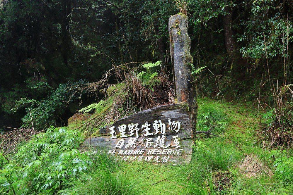 就算是位階高的「野生動物保護區」,也不會有排除人類進入的措施,禁止的是開發與狩獵。 圖/作者自攝