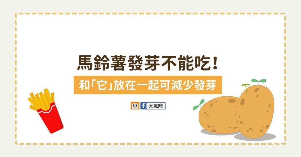 馬鈴薯發芽不能吃!和「它」放在一起可減少發芽。