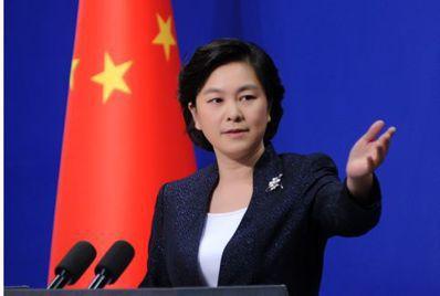 中共外交部發言人華春瑩。(環球網)