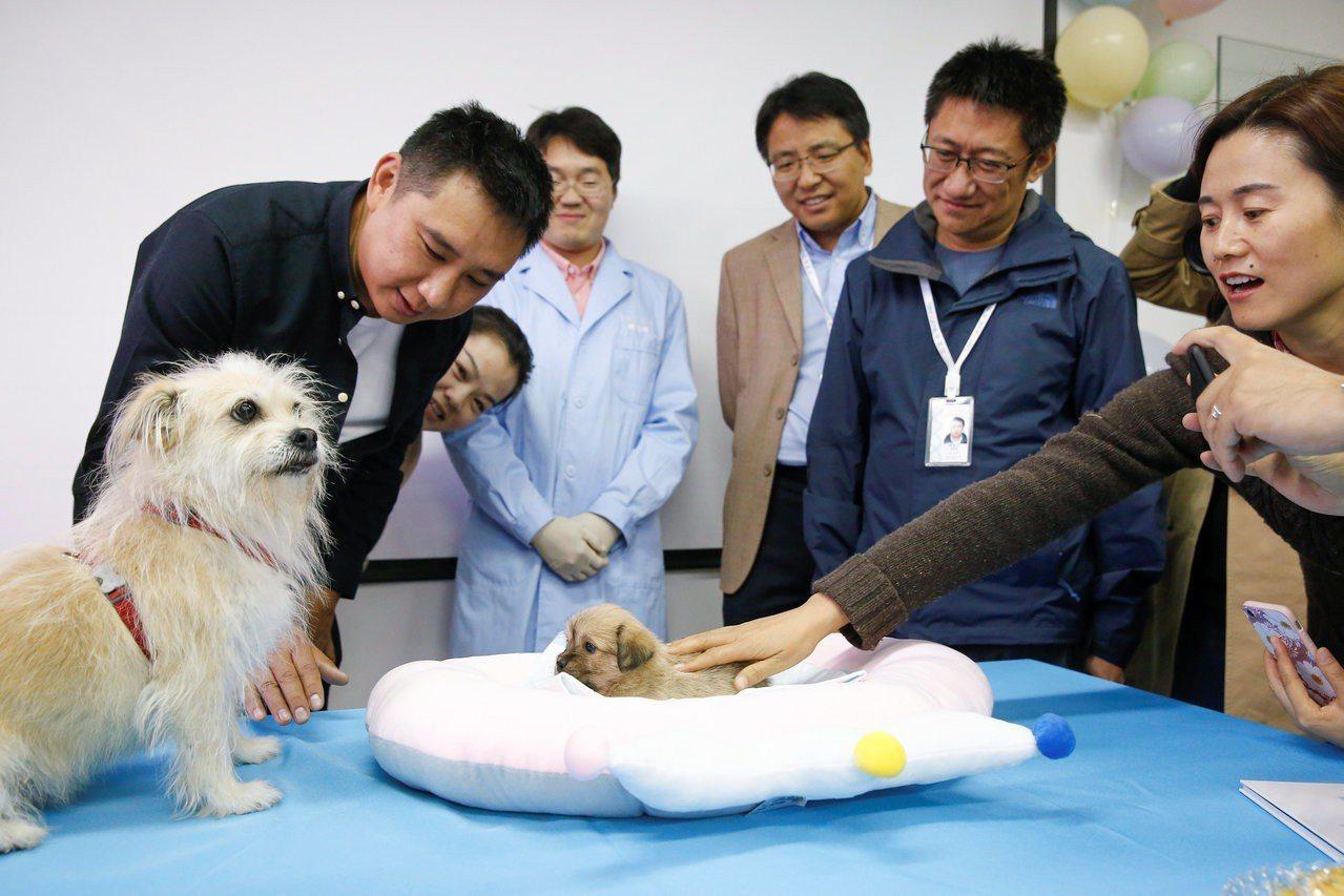 中國生技公司首推出寵物複製服務,要與南韓瓜分商機。在中國當局大力推動發展科技產業...