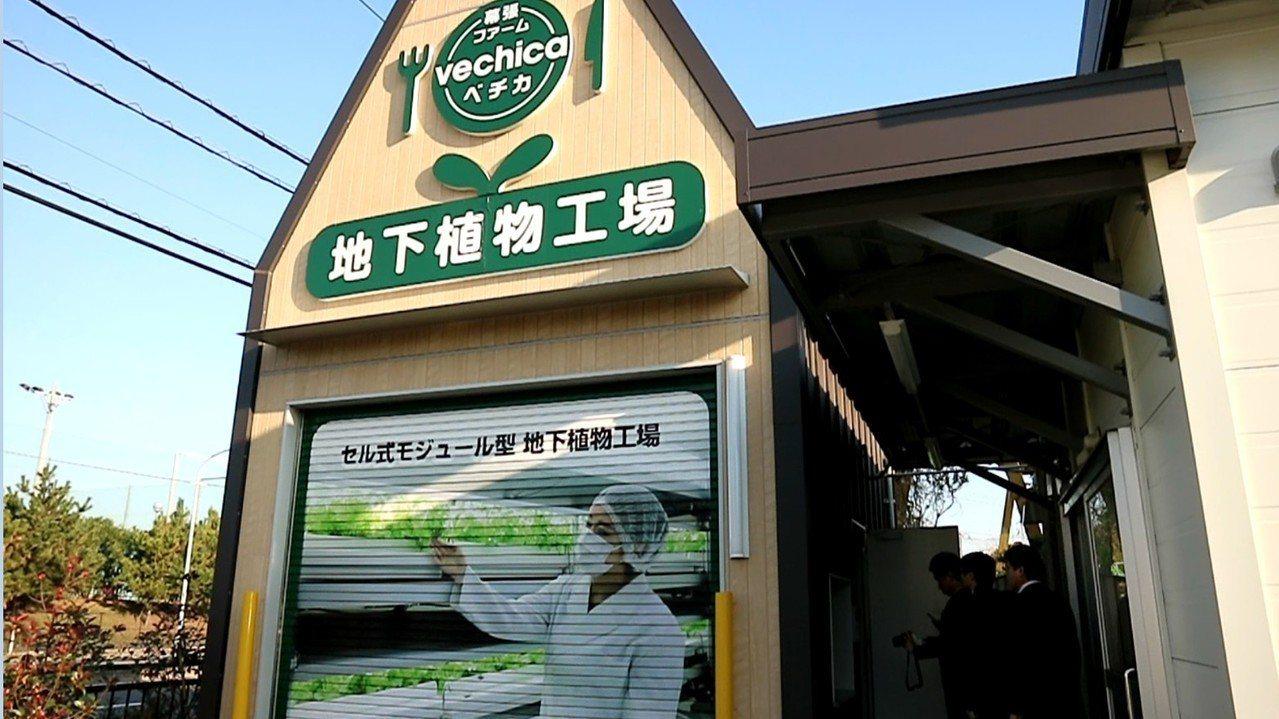 位於日本東京附近千葉縣一家地下植物工廠,實現了全自動化「種菜」。記者蔡佩芳/攝影