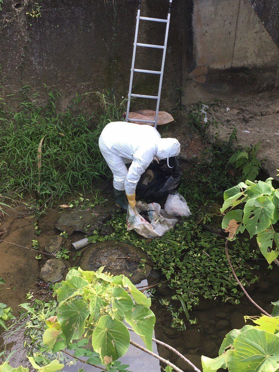 家畜疾病防治所人員,昨天到場清理雞屍。圖/家畜疾病防治所提供