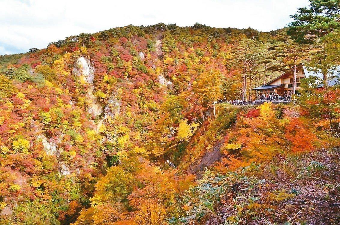 北日本一直是台灣旅客熱愛的旅遊目的地,仙台近年更大受歡迎。 Booking.co...