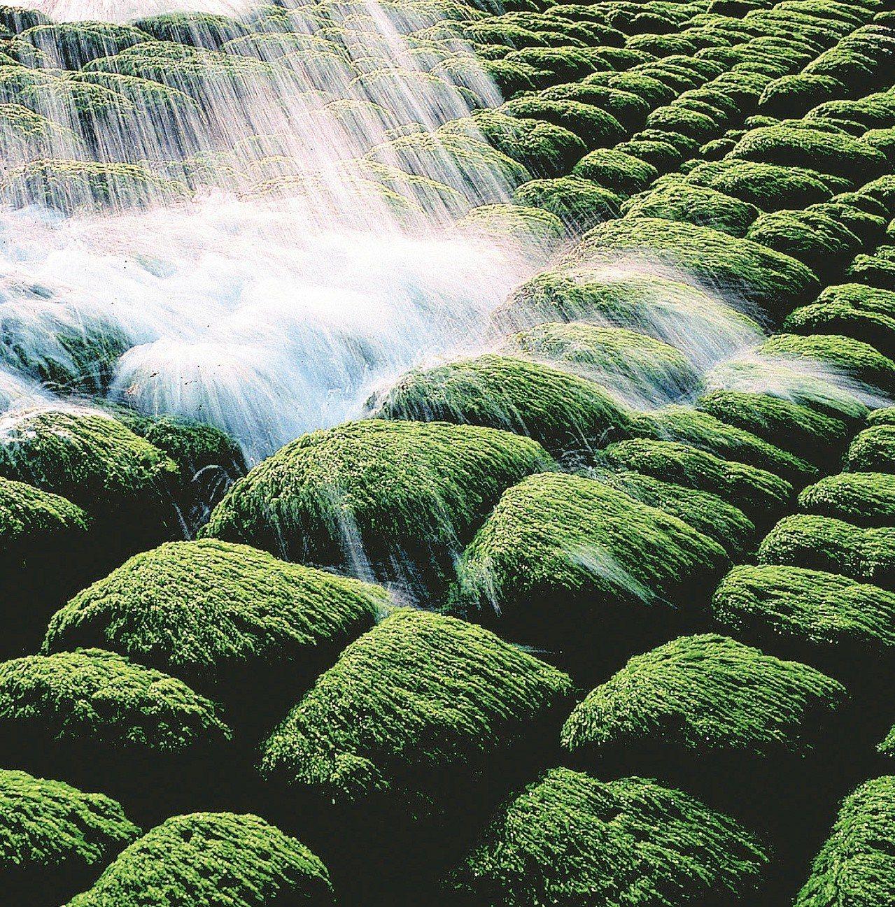 基隆市和平島公園的地質景觀享譽全台。圖為和平島豆腐岩的日出美景,被外媒選為「全球...
