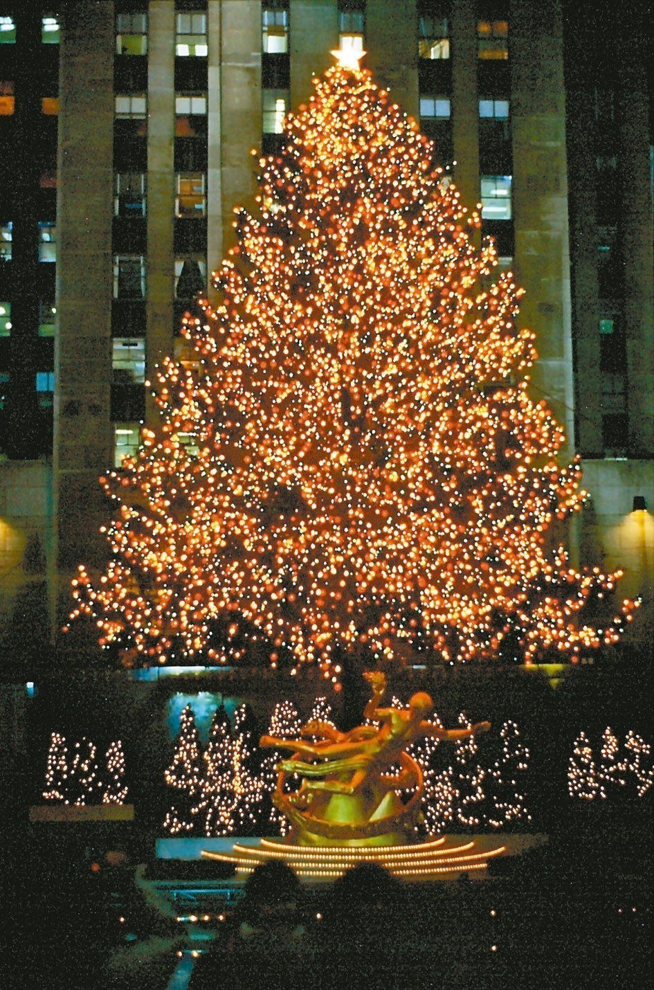 紐約洛克菲勒中心世界最高的聖誕樹。 圖/娜斯