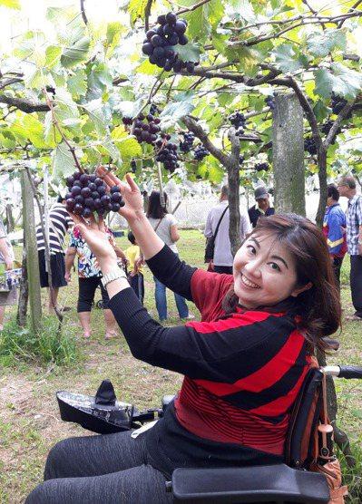 在這個果園裡,每串葡萄都黑得發亮。圖/游擊文化提供圖