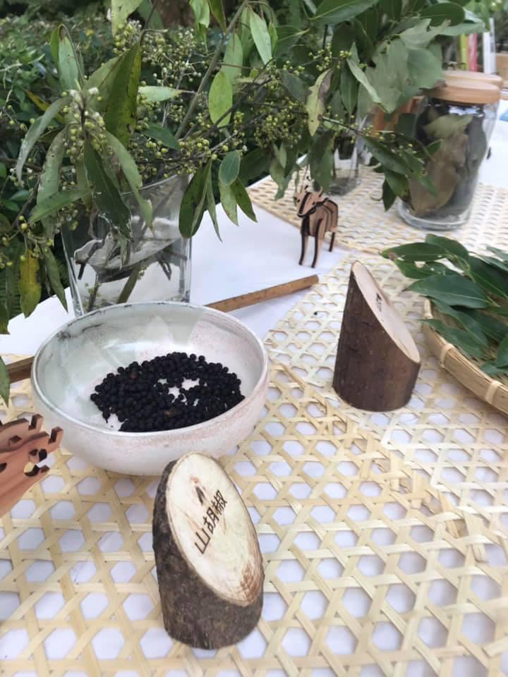 山胡椒植株。圖/林試所提供