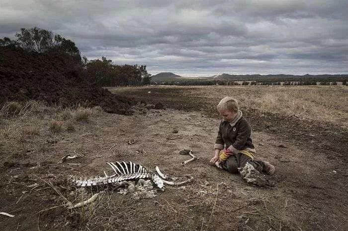氣候變化正加劇澳洲的乾旱。(圖源:英國《自然》雜誌網站)