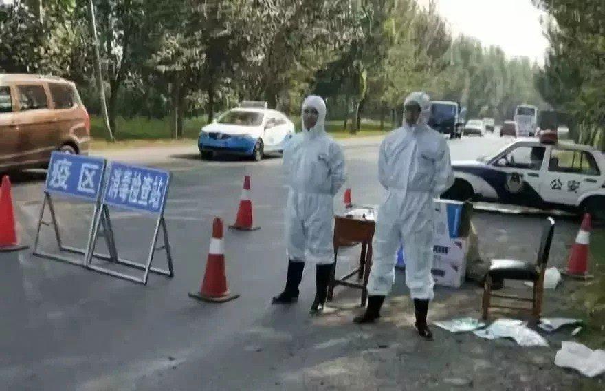福建省發現第三起非洲豬瘟疫情。(圖片取自網路)