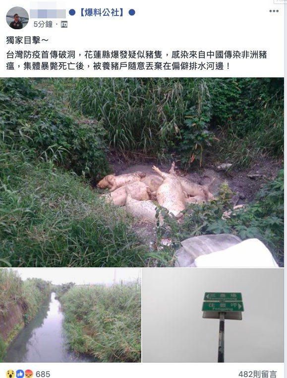 謝姓網友於臉書貼文指出,有死豬遺棄於花蓮縣,疑似感染來自中國傳染的非洲豬瘟,並寫...