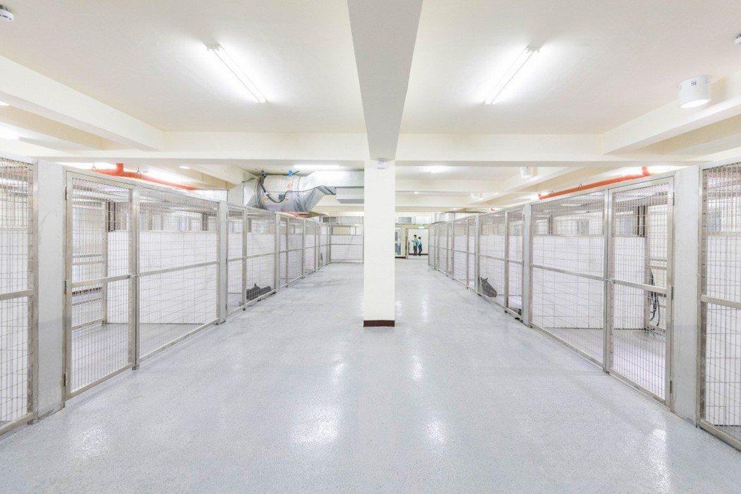 明亮寬敞的桃園市動物保護教育園區完工,大幅提昇收容犬貓數,但卻陸續爆出硬體與管理...