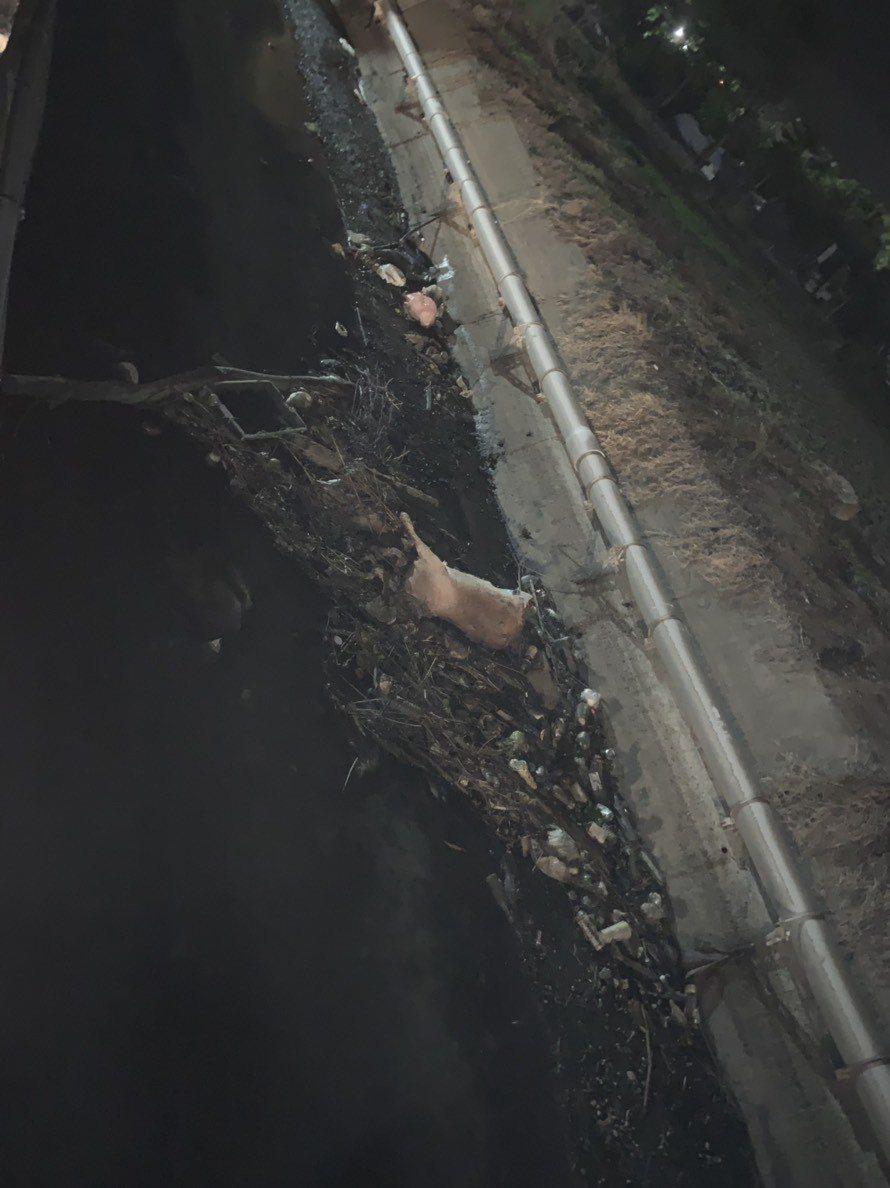彰化縣伸港鄉海尾大排今天傍晚傳發現二隻死豬,由於正值中國非洲豬瘟敏感時刻,民眾嚇...