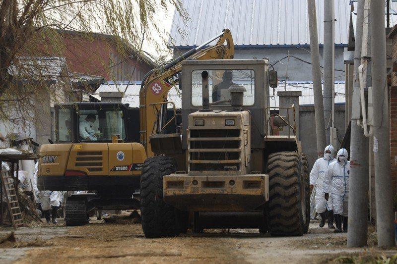 非洲豬瘟蔓延,工人進入已封閉的養豬場進行消毒防疫,攝於11月23日,中國北京。 ...