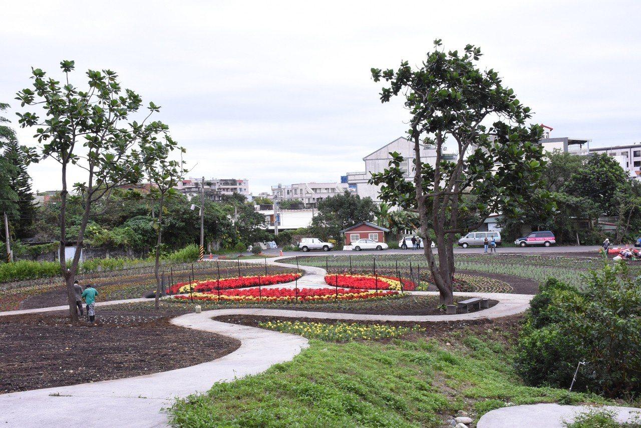 花蓮市公所在美崙地區的介壽新村社區花園打造花海,營造冬日美景。圖/市公所提供