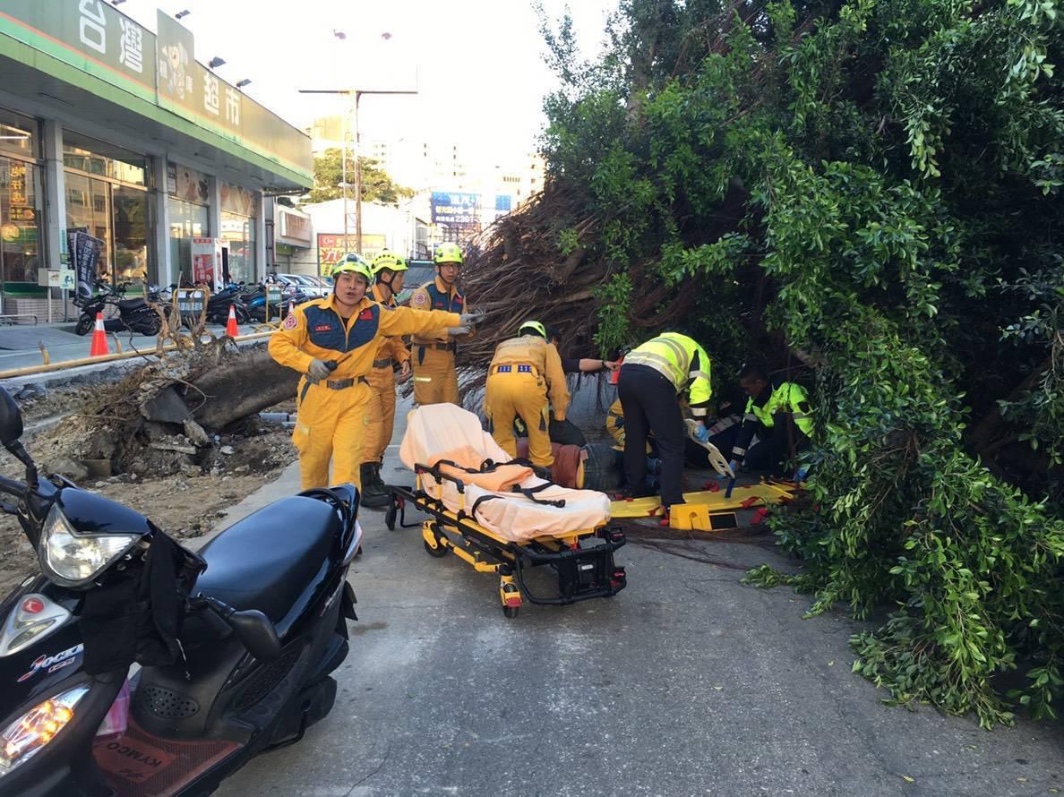 救護人員將被路樹壓傷的一男一女機車騎士救出,送醫治療。記者林佩均/翻攝
