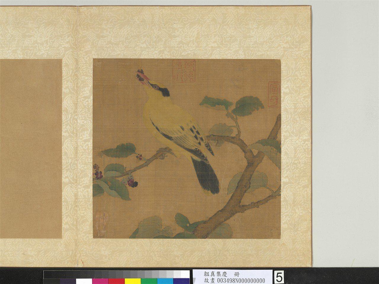 宋畫「桑枝黃鳥」是國寶級文物。圖/故宮提供