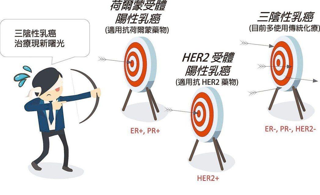 各類型乳癌治療示意圖 圖/沈陳石銘提供