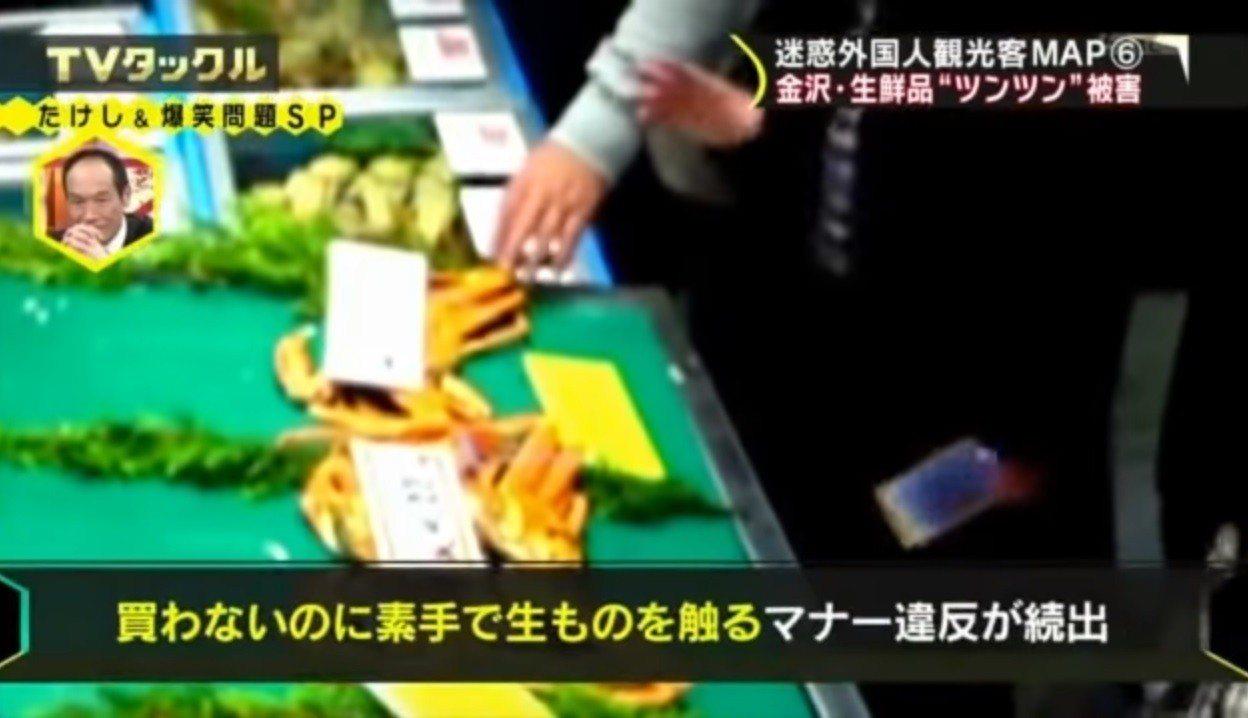遊客無視警告牌,伸手摸螃蟹。(取自YouTube)