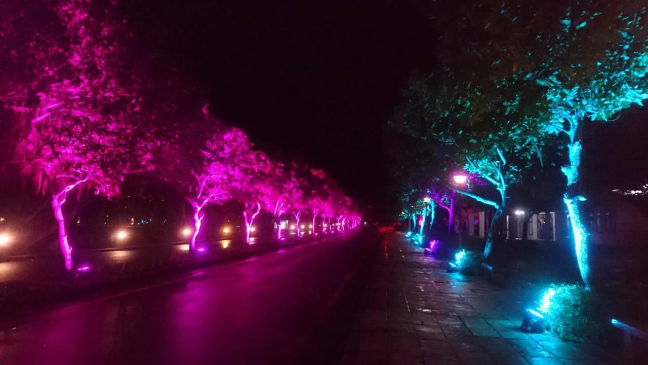在迎曙光活動前,遊客還可以一覽「2019光點·福隆系列活動」,動態光雕秀璀璨福隆...
