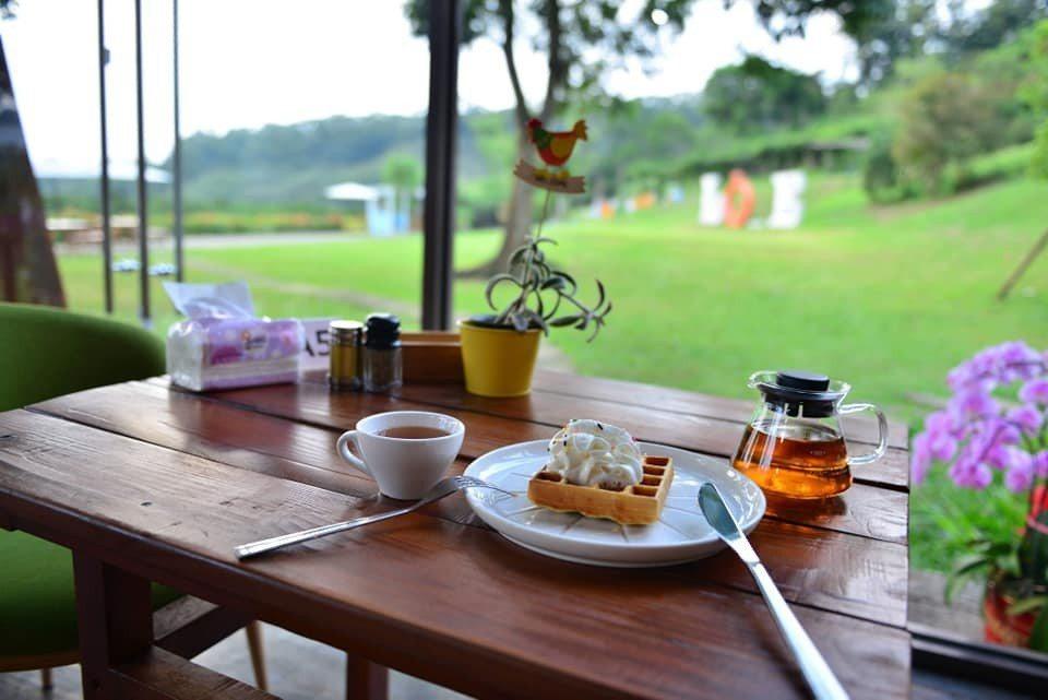 森林玻璃屋中提供多種餐點。圖/摘自澄香森林粉絲團