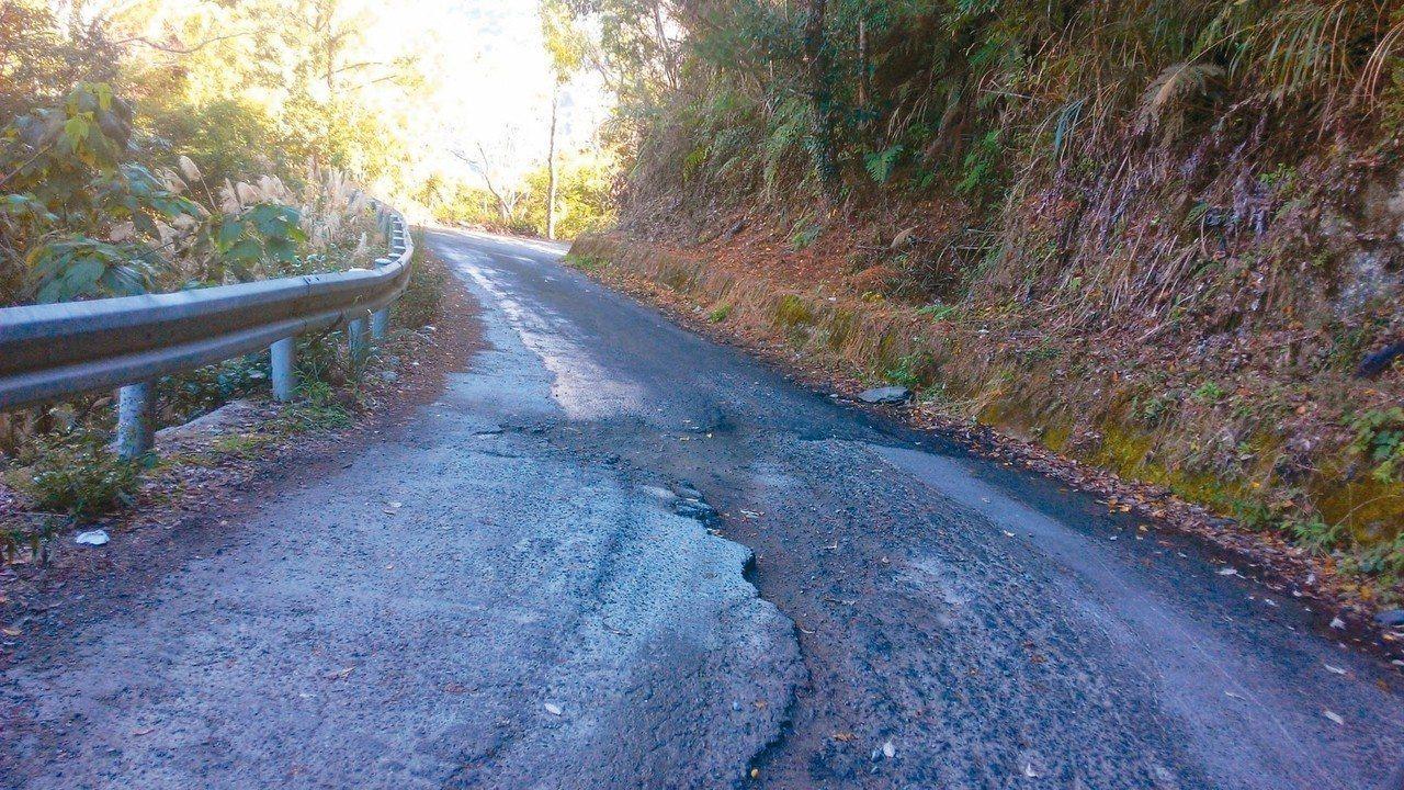 司馬庫斯聯外道路狹窄且坑洞多,遊客抱怨連連。 圖/尖石鄉公所提供